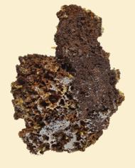 Mimemite-Crystals-on-matrix-570-2