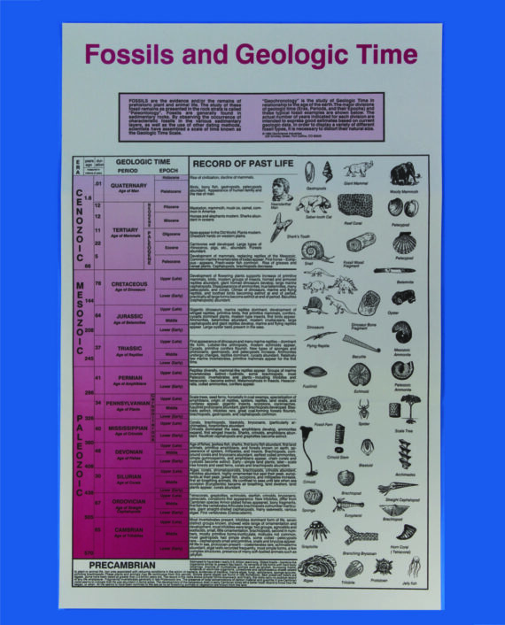 Fossils-and-Geologic-Time-Chart